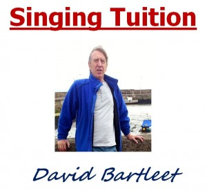 david barleet singing